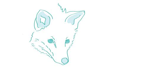 Prefíkaný ako líška - ako sa to povie anglicky?