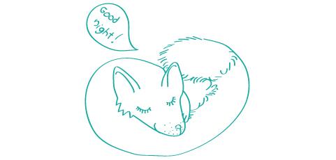 Tam, kde líšky dávajú dobrú noc - Ako sa to povie po anglicky?