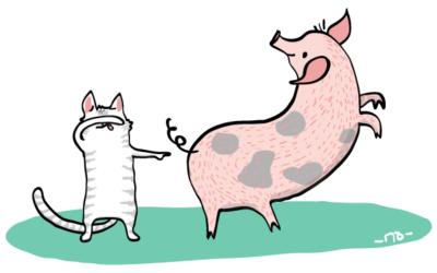 Anglické frázy – Kúpiť mačku vo vreci