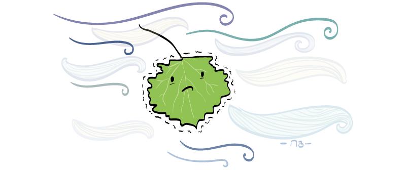 Anglické frázy – Shake like a leaf
