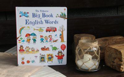 Big Book of English Words / Veľká kniha anglických slovíčok